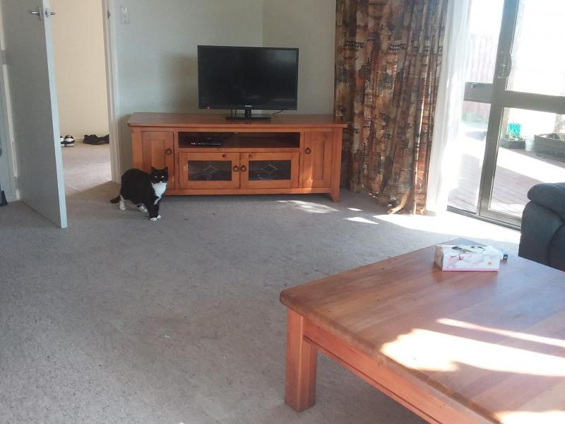 Christchurch, Canterbury - $200