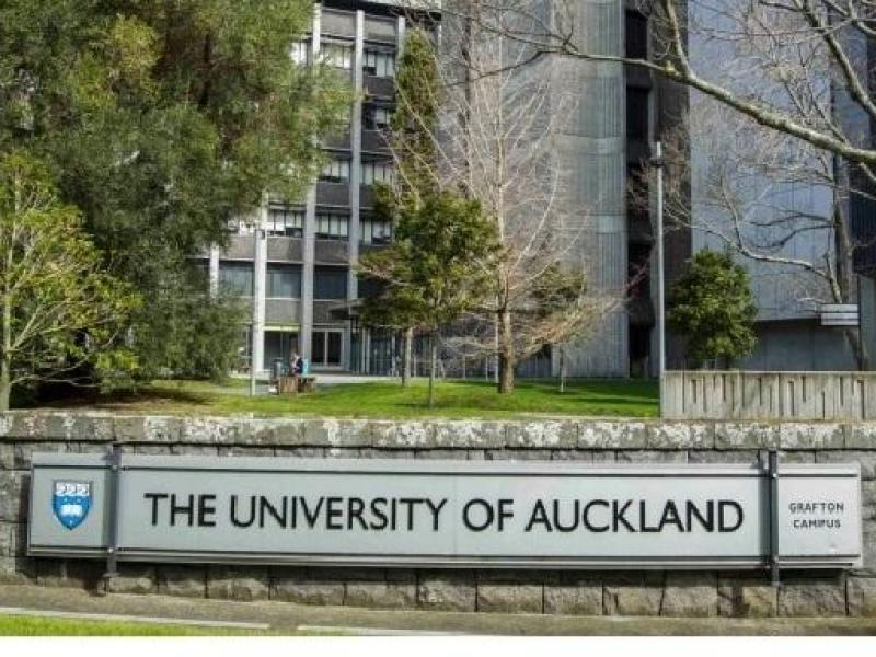 Auckland University Campus - 6km from our home