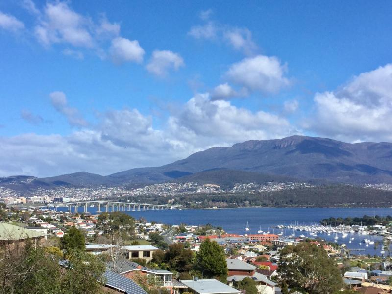 View of Mt Wellington, Tasman bridge, water, in the surrounds of beautiful garden areas.
